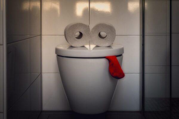 zwei Klopapierrollen auf einer geschlossenen Toilette, ein roter Socken ist zwischen Deckel und Toilette eingezwängt. Das Ganze ergibt ein Gesicht, das etwas betreten aussieht.